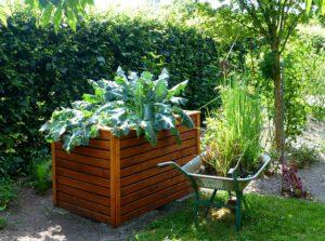 czy warto prowadzić ogródek warzywny, Czy warto prowadzić ogródek warzywny?